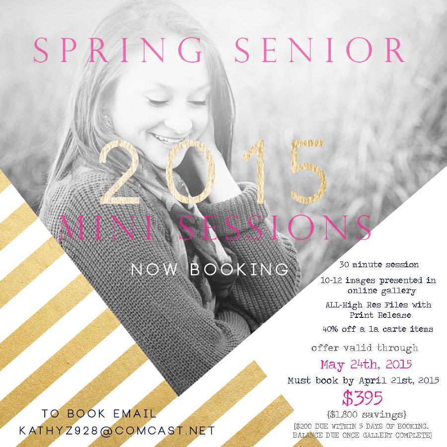 2015 spring senior mini promo